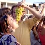 Laatste Zomerhit, 'De bakjes druiven die gaan hard'.