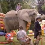 Knaks van Unox reclame – Het belangrijkste evenement op een kinderfeestje