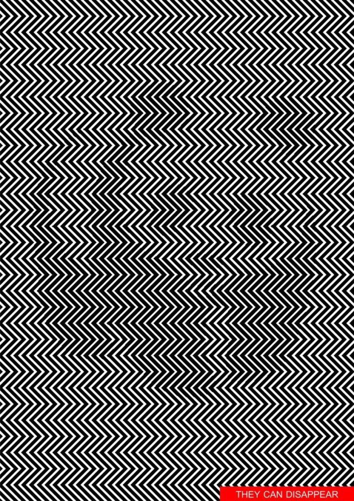 optische illusie panda